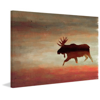 Moose Canvas Wall Art