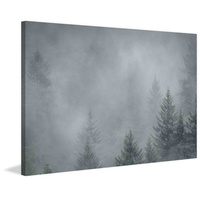Foggy Pines Canvas Art Print